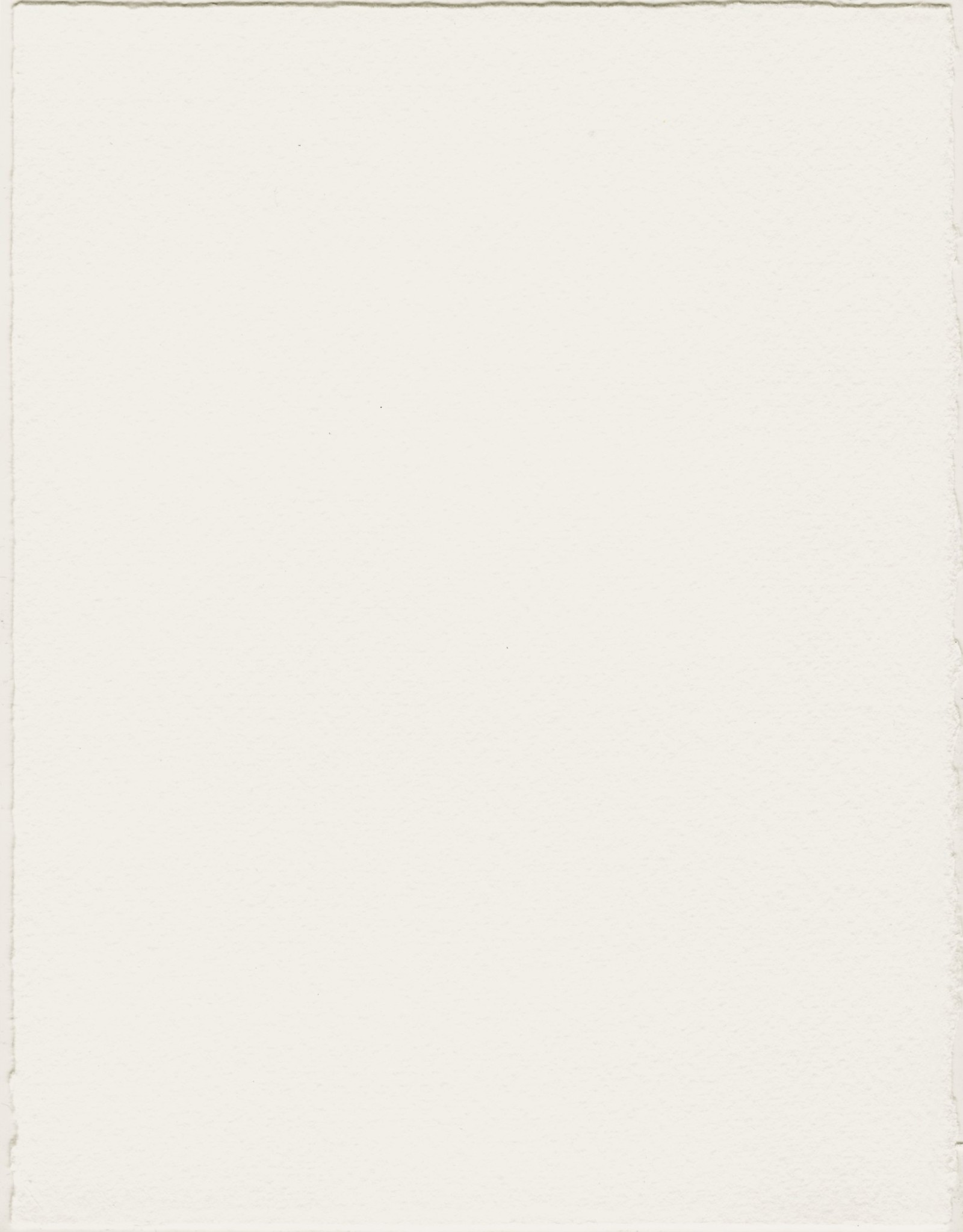 "Fabriano Medioevalis Card, 207S, 6"" x 8"" Box of 100"
