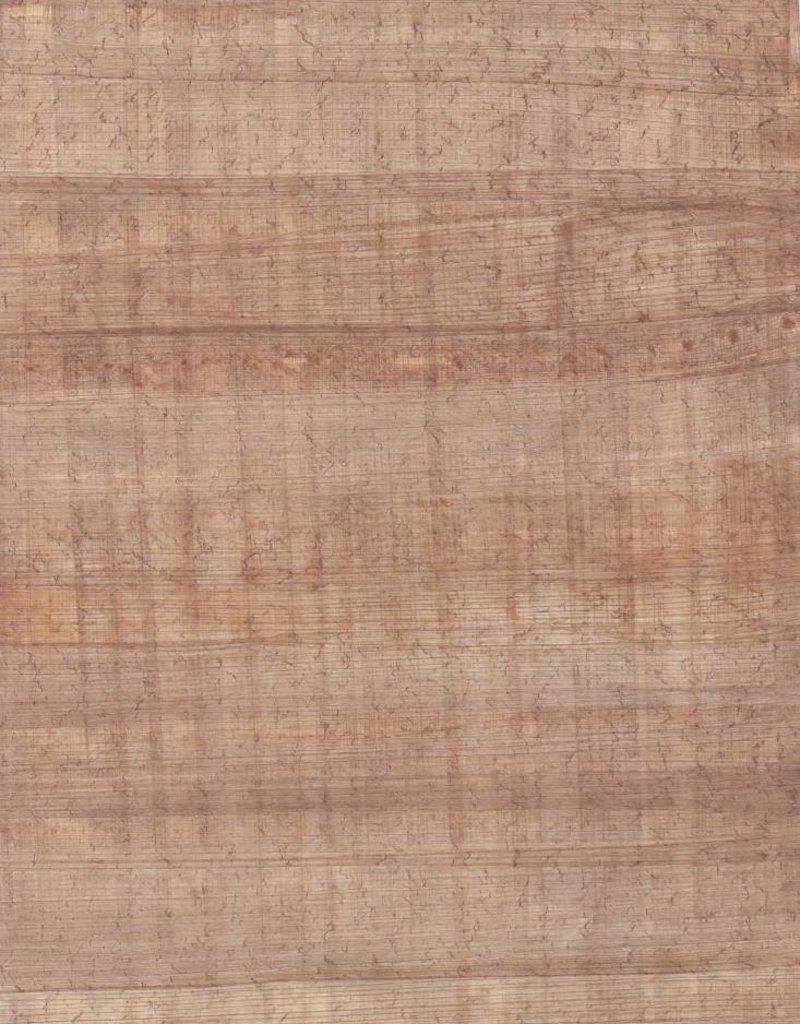 "Egyptian Papyrus Medium 8"" x 12"""