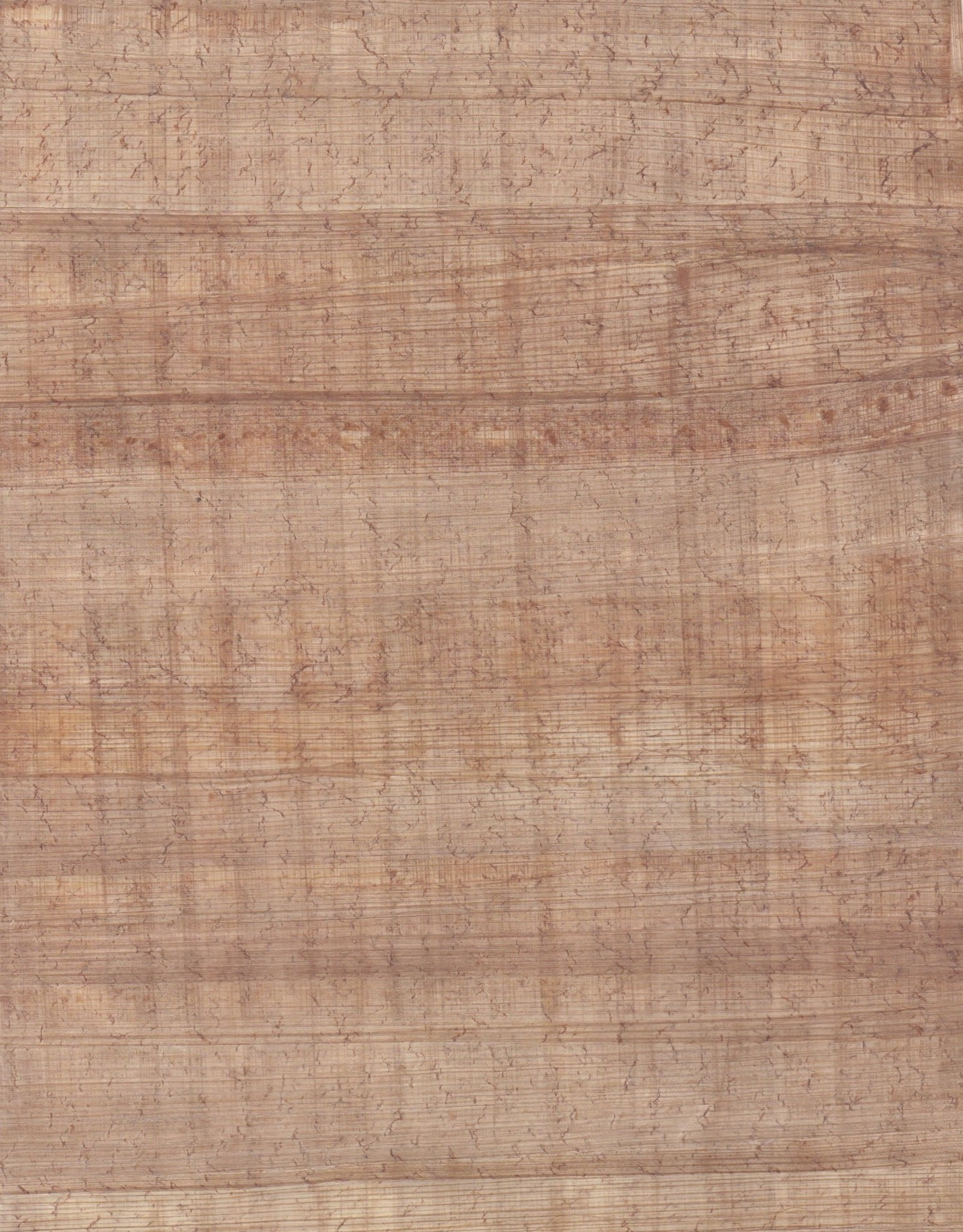 "Egyptian Papyrus Medium 16"" x 24"""