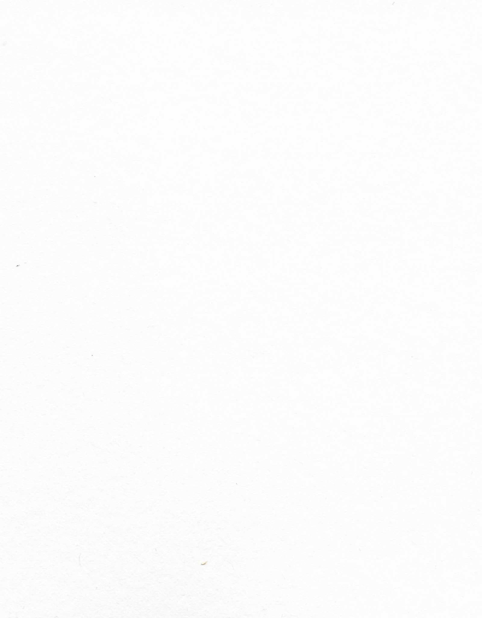 "Arches Watercolor  White, Hot Press 25.75"" x 40"", 156# / 356gsm"