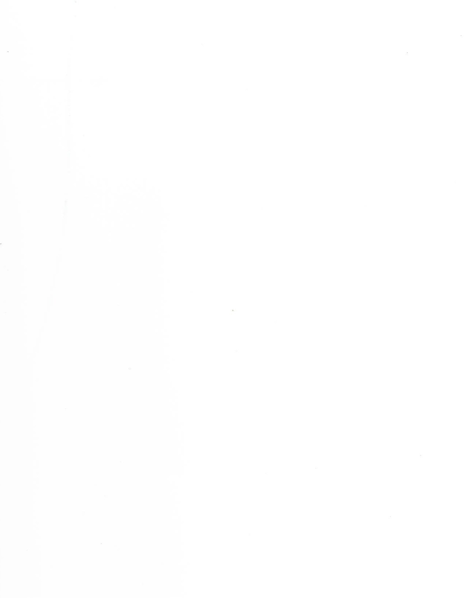 "Yupo, Translucent, 104# Text, 25"" x 38"", 153gsm"