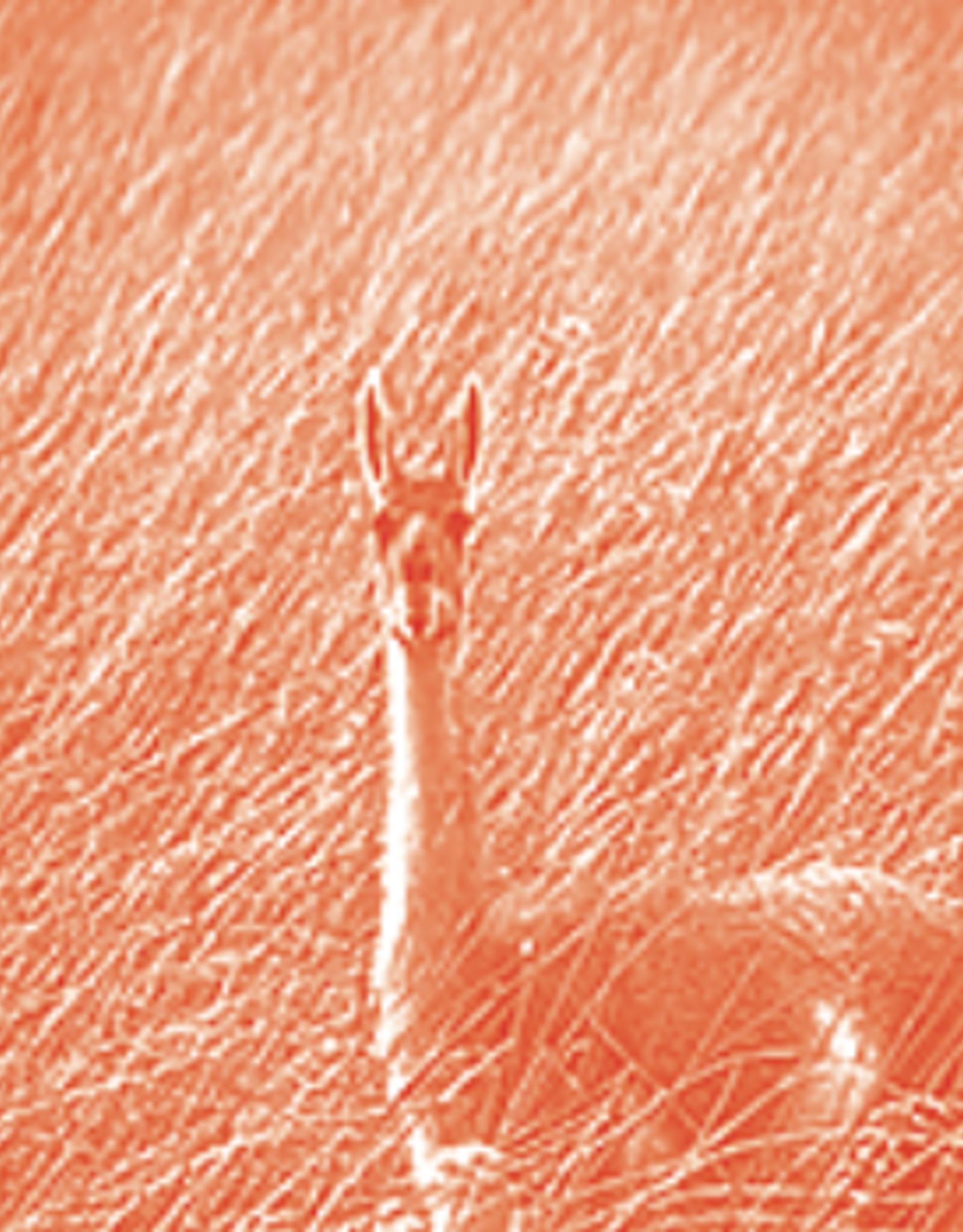 Solarfast Dye, Orange, 4oz