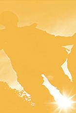 Solarfast Dye, Golden Yellow, 4oz