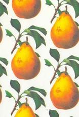 "Italian Design Pear, 19"" x 27"", 90gsm"