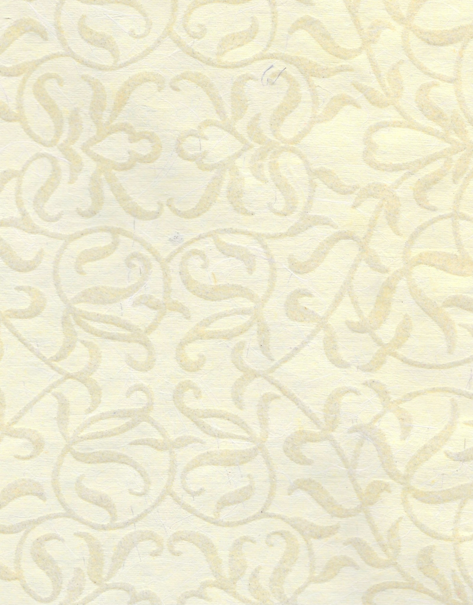 "Flocked Salon White on Cream, 20"" x 28"""