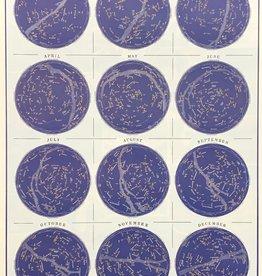 """Cavallini Constellations, Cavallini Poster Print, 20"""" x 28"""""""