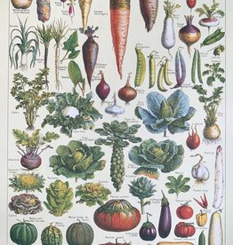 "Cavallini Le Jardin: Garden Vegetables, Cavallini Poster Print, 20"" x 28"""
