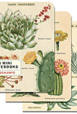 Succulents, Cavallini Mini Notebook Set of 3: Grid, Blank and Lined