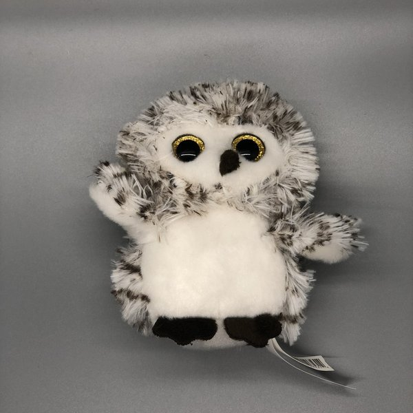 Little Winter Owls with Sound