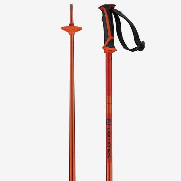 Salomon Men's Arctic Ski Poles
