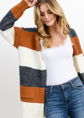 WINTER WINDS SWEATER CARDIGAN