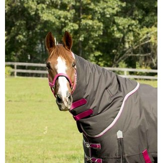Shires Shires Highlander Plus 300g Neck Cover