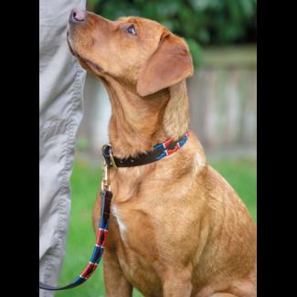 Shires Shires Drover Polo Dog Collar