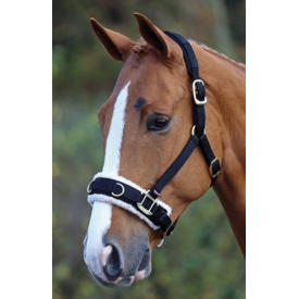 Shires Shires Fleece Lined Lunge Cavesson