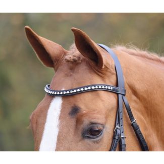 Shires Shires Aviemore Large Diamante Browband