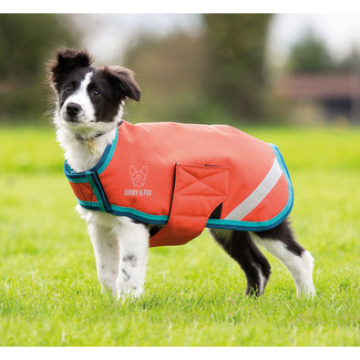 Shires Shires Digby & Fox Waterproof Dog Coat