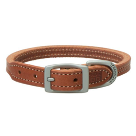 Terrain D.O.G. Buttered Harness Leather Hybrid Dog Collar
