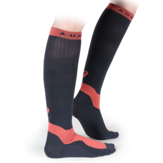 Shires Shires Aubrion Perivale Adult Compression Socks