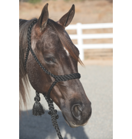 Professionals Choice Professional's Choice Cowboy Braided Rope Halter
