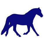 Mini/Pony