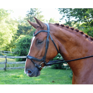 Red Barn Red Barn Arena Bridle