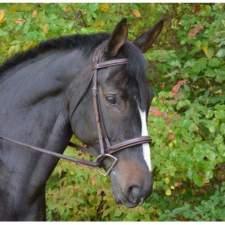 Black Oak Black Oak Cyprus Bridle