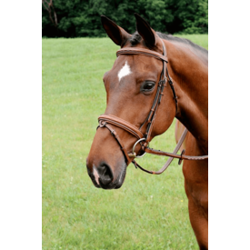 Arc de Triomphe Arc de Triomphe Starman Bridle w/ Raised Rubber Reins