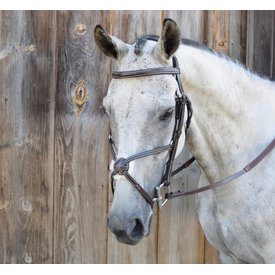 Black Oak Black Oak Cedar Figure Eight Bridle