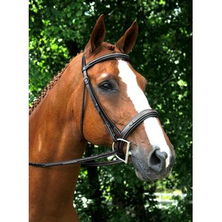 Red Barn Red Barn Tryon Fancy Stitched Bridle