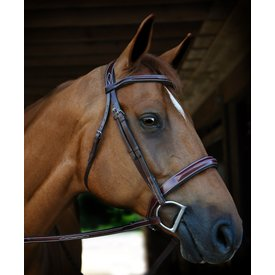 Red Barn Red Barn Tuscany Padded Fancy Stitched Bridle