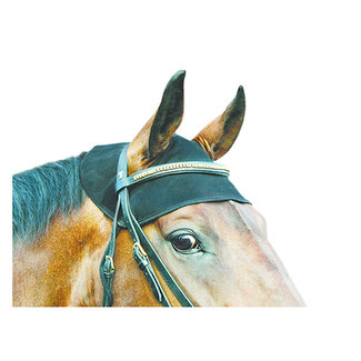 Back on Track Back on Track Therapeutic Horse Cap