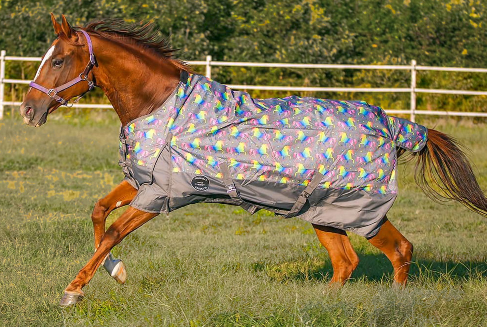 Showman Showman 1200D Waterproof 300g Turnout Heavy Blanket