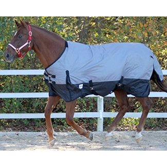 Rugged Ride Rugged Ride 600 Denier Waterproof Medium 200g Turnout Blanket