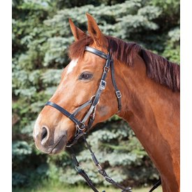 Waldhausen Waldhausen STAR Bitless Bridle Two