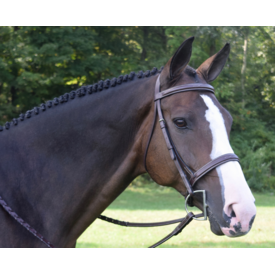 Black Oak Black Oak Spruce Fancy Stitch Bridle