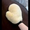 Waldhausen Lambskin Grooming Glove