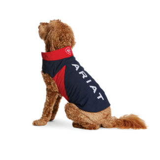 Ariat Ariat Team Softshell Dog Jacket