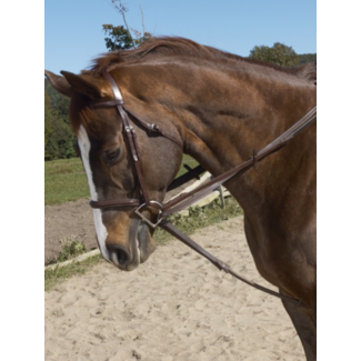 Ovation Ovation Stretch Cord Draw Reins
