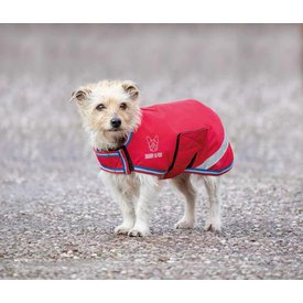 Digby & Fox Shires Digby & Fox Waterproof Dog Coat 2020