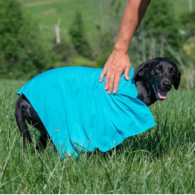 CoolAid Terrain D.O.G.  CoolAid Cooling Towel