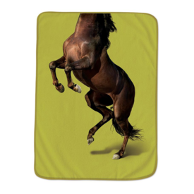 Howligans Howligans Exotic Pets Pet Blanket