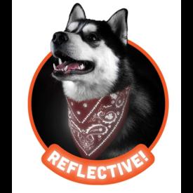 Howligans Howligans Reflective Dog Bandana