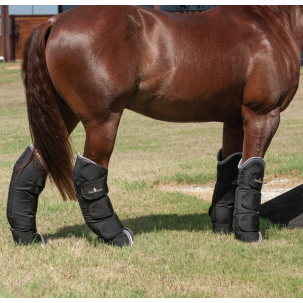 Classic Equine Shipping Boots Set of 4