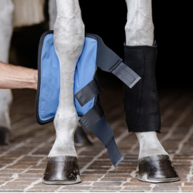 EquiFit EquiFit Essential Cold Therapy Tendon Boot (Pair)