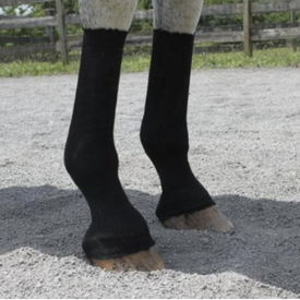 EquiFit EquiFit HorseSox Individual Pack
