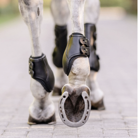 EquiFit EquiFit Medal Eq-Teq Hind Boots