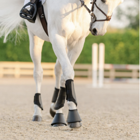 EquiFit EquiFit Essential EveryDay Front Boot