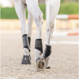 EquiFit EquiFit Essential EveryDay Hind Boot