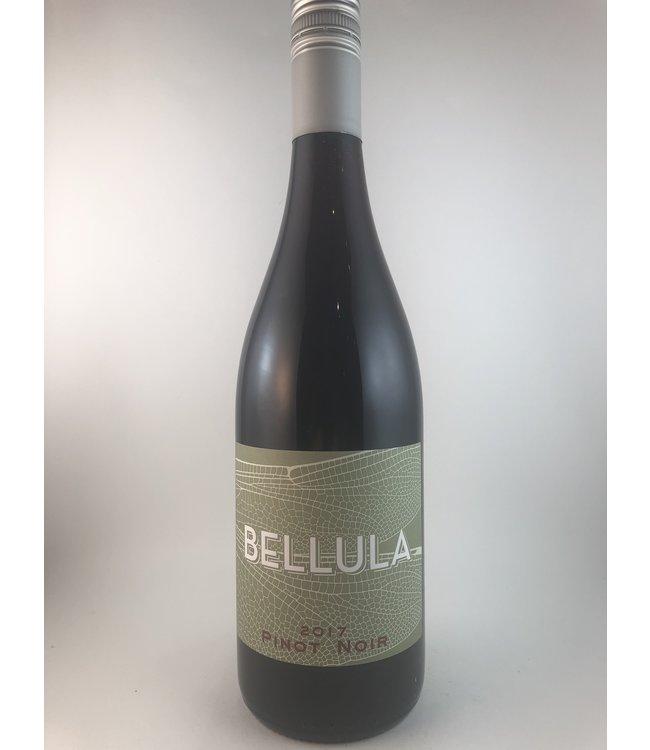 Pinot Noir Pinot Noir, Bellula, J.P. Bourgeois, FR, 2107