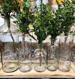 Wood Tray Glass Bottles